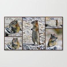 Chipmunk Collage Canvas Print