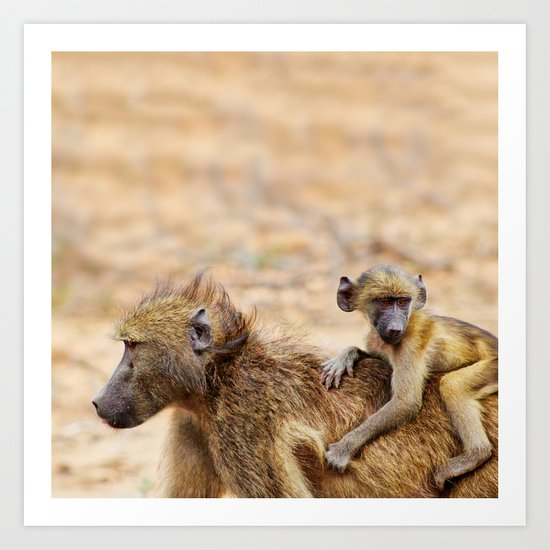 Cute monkey baby and mother Art Print