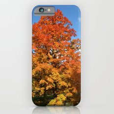 Red, Orange, Yellow Tree Color Photography Slim Case iPhone 6s