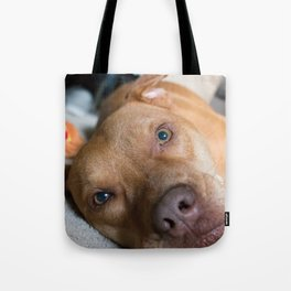 "did you say ""play""? Tote Bag"