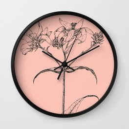 Scientific Daisy Pink Flower Drawing Wall Clock