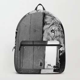 Beware of Dog black and white photograph of attack lion humorous black and white photography Backpack