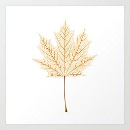 Maple leaf skeleton Art Print