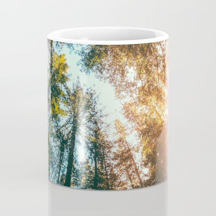 California Redwoods Sun-rays and Sky Coffee Mug