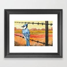 Blue Jay in the Desert Framed Art Print