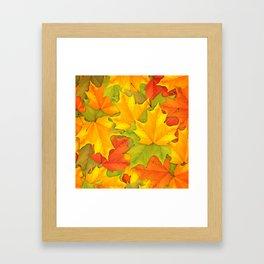 Autumn leaves #9 Framed Art Print