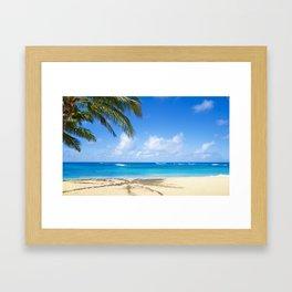 Coconut Palm tree on the sandy Poipu beach in Hawaii, Kauai Framed Art Print