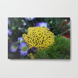 Peeping Sunshine Metal Print