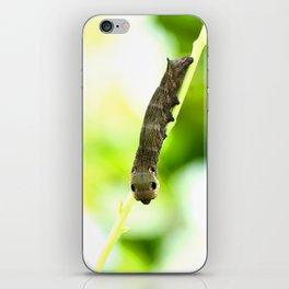 Caterpillar On A Green Plant #decor #society6 iPhone Skin