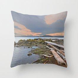 LONE SEA GULL IN THE SAN JUAN ISLANDS Throw Pillow