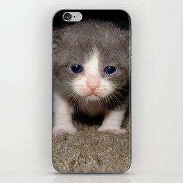 Dopey iPhone Skin