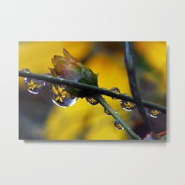 Even weeds are beautiful Metal Print