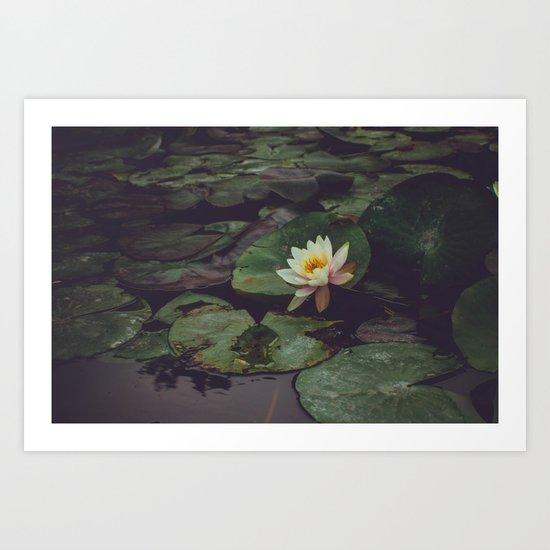 Pagoda Blossom Art Print