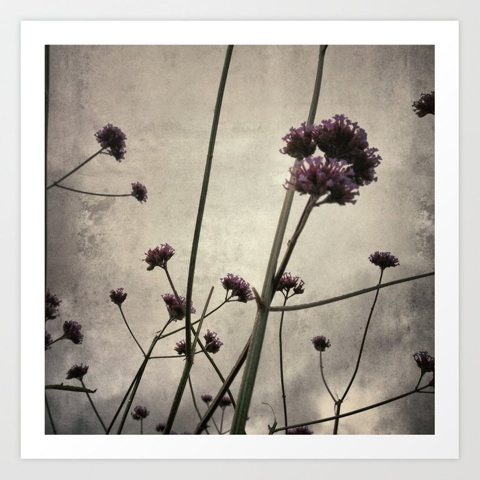 Wild flowers in the city Art Print