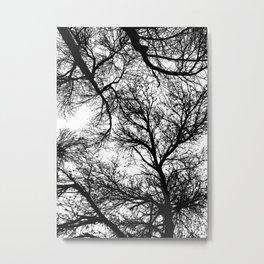 Branches 4 Metal Print