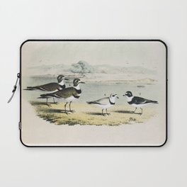 PLATE XL The Killdeer Plover The piping Ringed Plover The Semi-palmated, Ring, or Ring-neck Plover Laptop Sleeve
