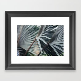 Palm Abstract Framed Art Print