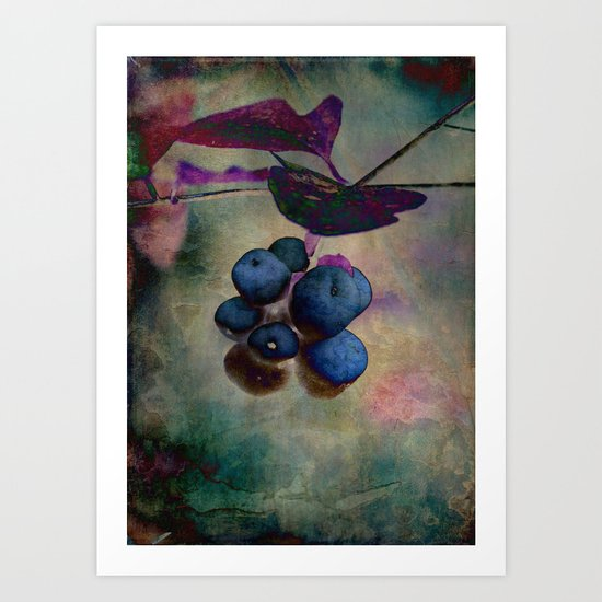 Blue Berries digitized Art Print