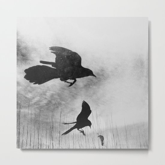 Learn to Fly - Black and White Metal Print