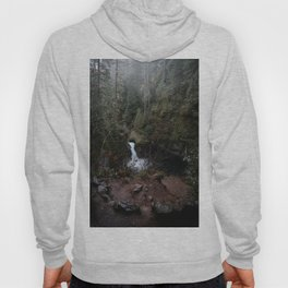 Punch Bowl Falls Hoody
