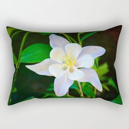 Winter Park 2018 Study 2 Rectangular Pillow