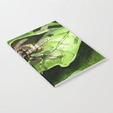 Wasp on flower16 Notebook