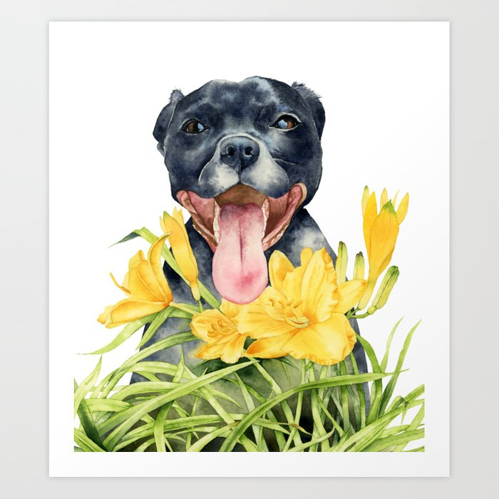 Joy | Pit Bull Dog and Daylily Watercolor Painting Art Print