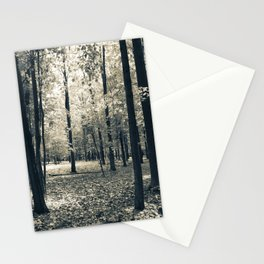 Light in the Forest Stationery Cards