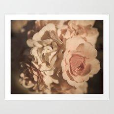 Soft Pink Roses Art Print