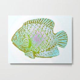 Sunfish Colors 3 Metal Print