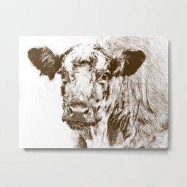 Ardnamurchan Coo - Brown Metal Print