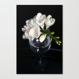 white freesia in a glass Canvas Print