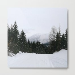 Mist between mountains Metal Print
