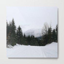 Mist between mountains Metal Print