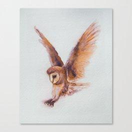 Coruja the Owl by Machale O'Neill Canvas Print