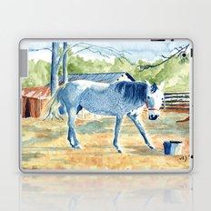 My Blue Horse Laptop & iPad Skin
