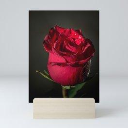 Wet rose Mini Art Print