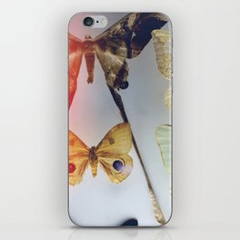 The Butterfly Collection iPhone Skin