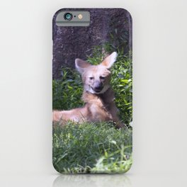 Philadelphia Zoo Series 15 iPhone Case