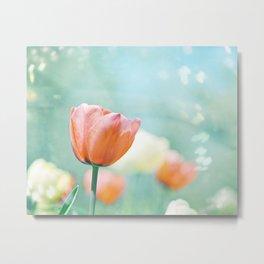 Tulip Flower Photography, Mint Teal Orange Tulips, Aqua Floral Photograph Metal Print