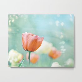 Tulip Flower Photography, Mint Teal Orange Tulips, Aqua Floral Photograph Metal Print
