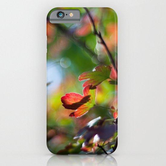 Autumn Rainbow iPhone & iPod Case