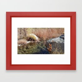 Ducks in December Framed Art Print