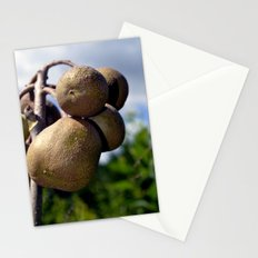 Wild Figs Stationery Cards