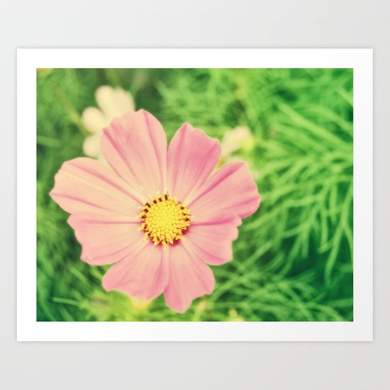 Golden Pink Art Print