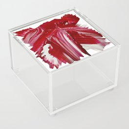 Lady in red Acrylic Box
