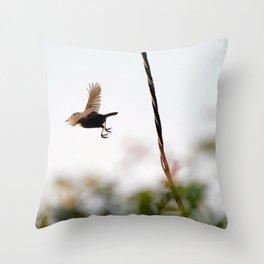 Wren Songbird Bird on Rusty Wire (Troglodytes) Throw Pillow