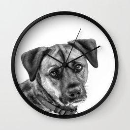 Puppy Dog Eyes Wall Clock