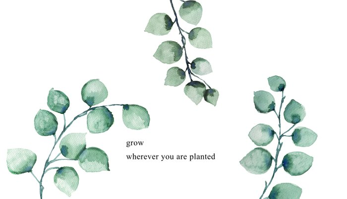 Grow wherever you are planted watercolor florals Pillow Sham