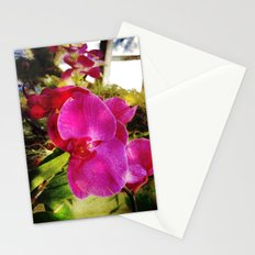orchids3 Stationery Cards